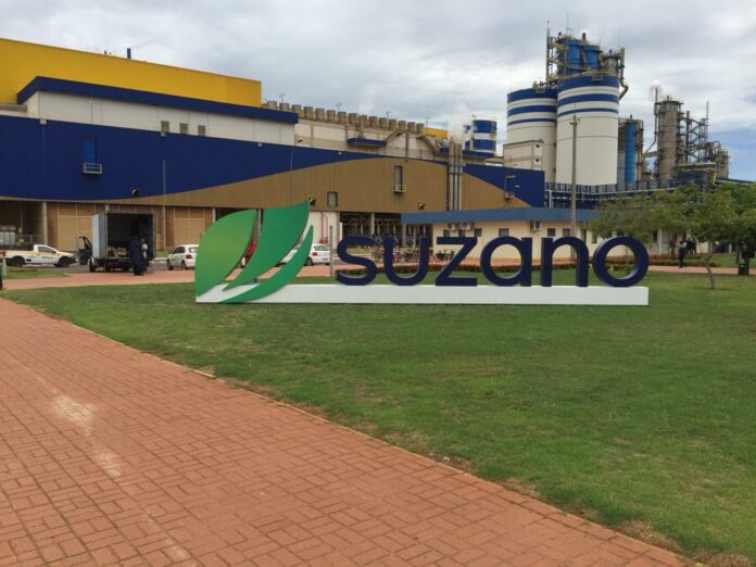 Suzano abre inscrições para o Programa de Estágio 2022